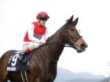 香港チャンピオンズデーに出走した日本馬3頭が帰国