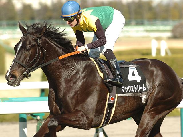 JRA現役唯一の12歳馬だったマックスドリーム(写真は2011年千里山特別優勝時)