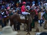 【ケンタッキーダービー】(アメリカ) 日本馬の関係者コメント