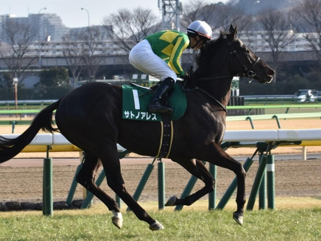 前走の東京新聞杯では3着となったサトノアレス(ユーザー投稿:kouBBさん)