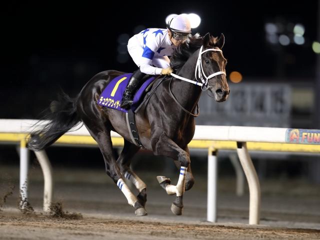 前走のダイオライト記念では4馬身差と圧勝したチュウワウィザード(撮影:高橋正和)