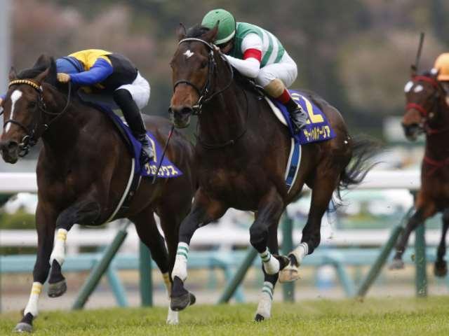 無敗の皐月賞馬サートゥルナーリアがダービーの予想1番人気に(撮影:下野雄規)