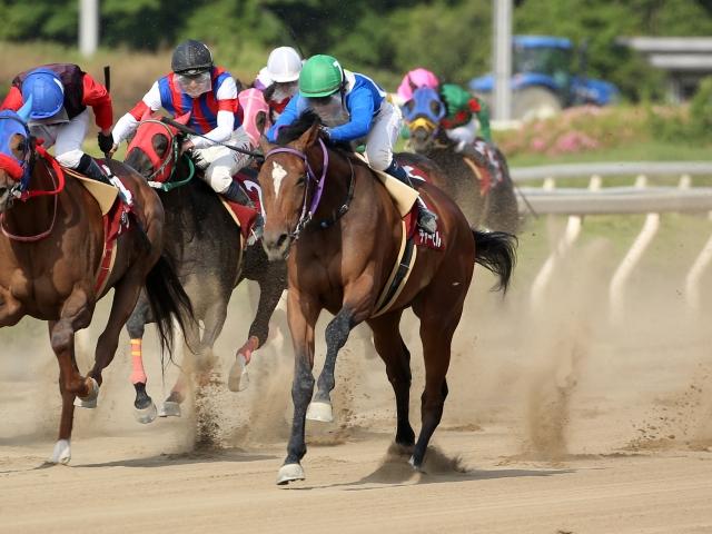 7番人気チャービルが直線で外から各馬を差し切り優勝(撮影:稲葉訓也)