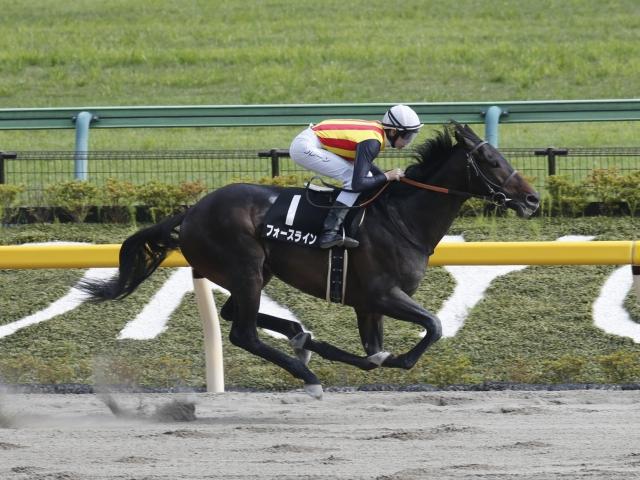 2馬身半差つけ勝利したフォースライン(c)netkeiba.com、撮影:下野雄規