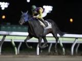 【大井・ゆりかもめオープン】リコーワルサーが人気に応えて快勝/地方競馬レース結果