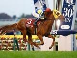 【JRA】セカンドテーブルが引退、乗馬に 2014年京王杯2歳S覇者