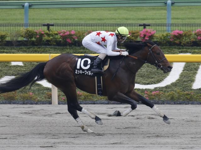 前走4馬身差の圧勝でOP入りを果たしたミッキーワイルド(写真は麦秋S優勝時、撮影:下野雄規)