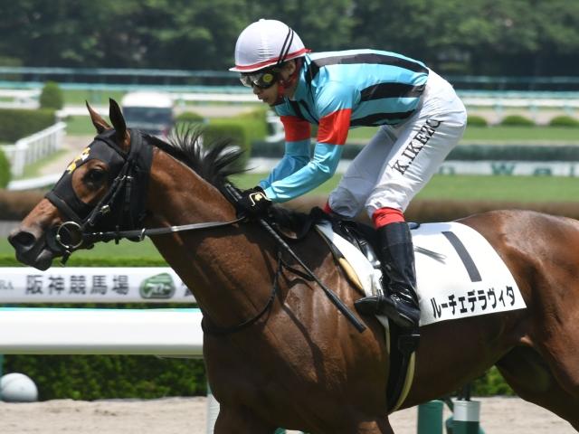 池添謙一騎手騎乗の新種牡馬キズナ産駒、ルーチェデラヴィタが勝利(c)netkeiba.com