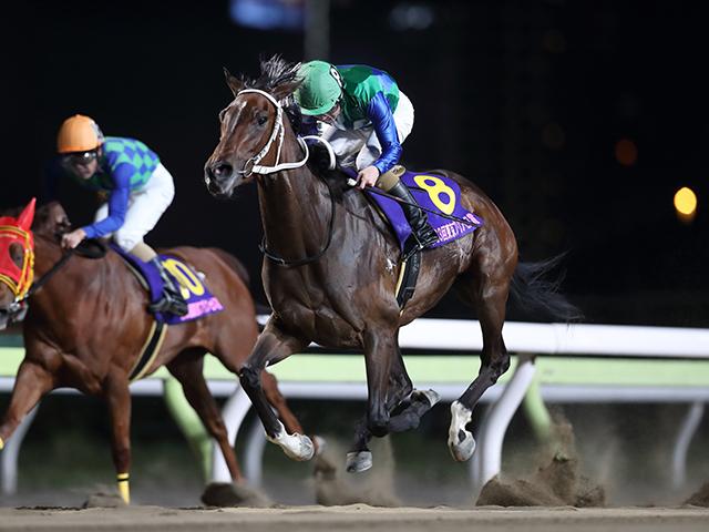 06年チャームアスリープ以来となる南関牝馬3冠に挑むトーセンガーネット。3冠目はJRA勢も相手になるだけに、真価が問われる一戦となる。(撮影:高橋正和)