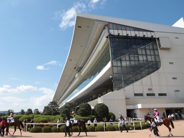 京都 競馬 場 改修 工事