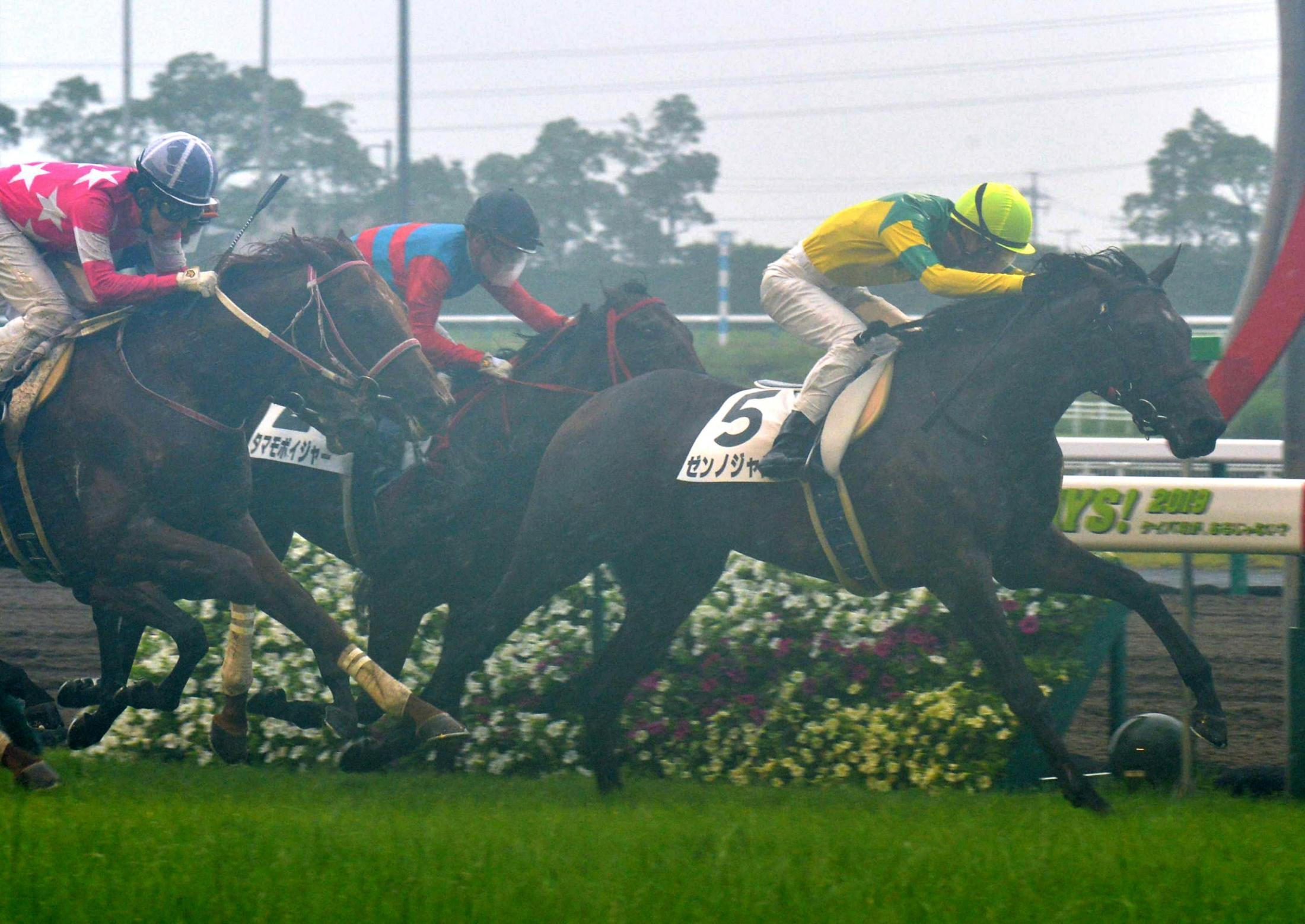 中京6レース、2歳新馬戦を制したゼンノジャスタ(右)