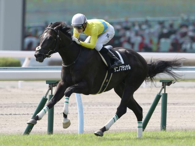 福島コースは初となるタニノフランケル(写真は昨年西部スポニチ賞優勝時)