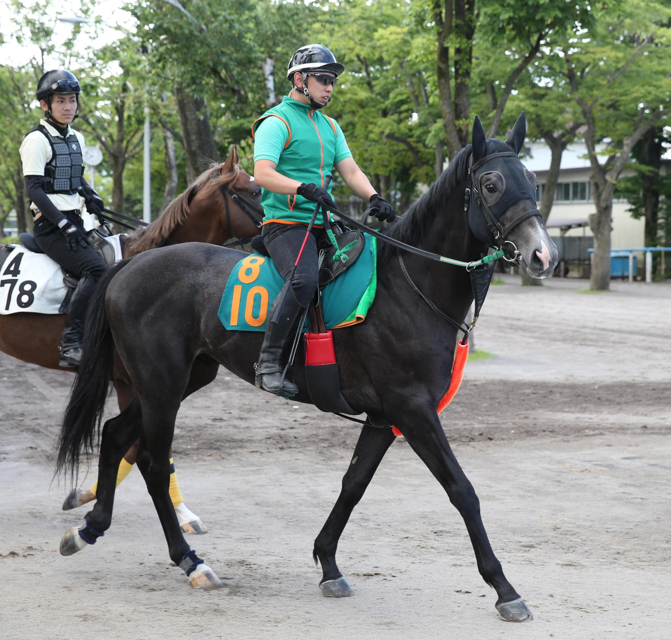 馬場へ向かう相沢厩舎のコスモシャルドネ