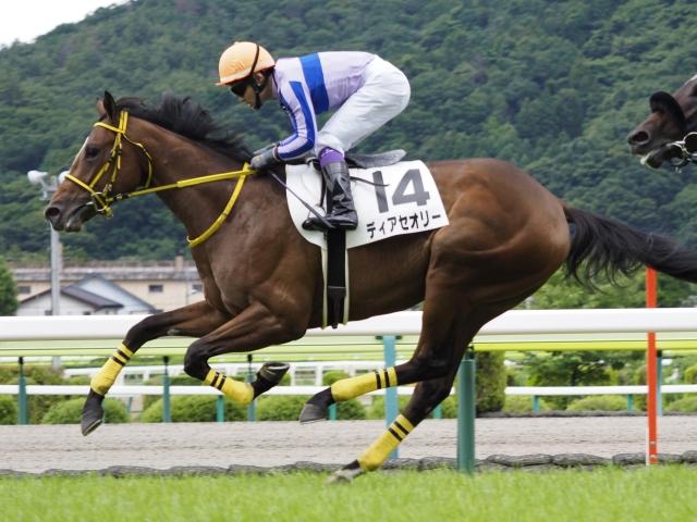 福島5Rは1番人気ディアセオリーが勝利(c)netkeiba.com、撮影:下野雄規