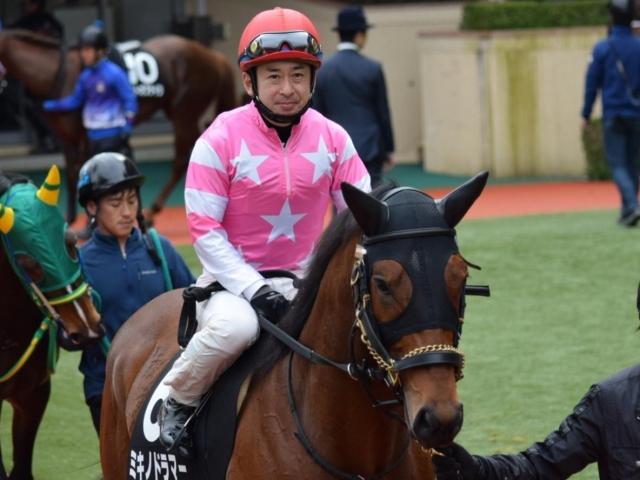 西田騎手とのコンビ継続となるミキノドラマー(写真は2016年萌黄賞出走時、ユーザー投稿:ウメリンさん)