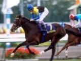 【三冠馬】歴代の三冠馬一覧