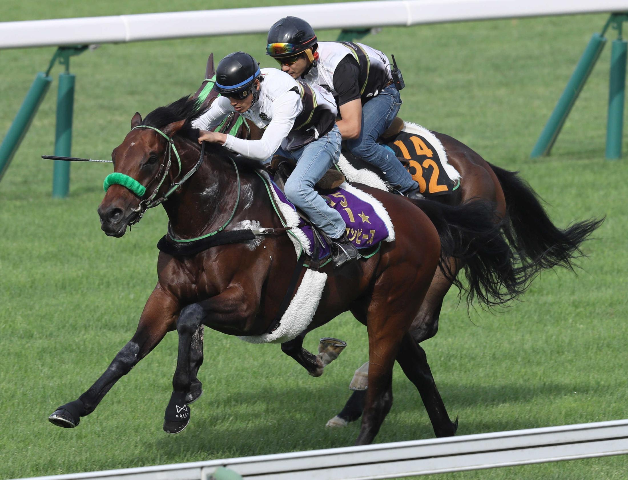 函館芝の併せ馬でしっかりと追われたブラストワンピース(手前)