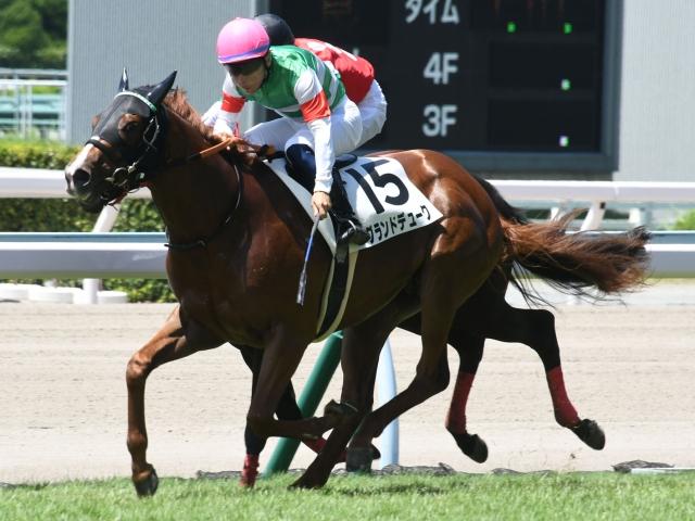 好スタートを決めて先手を取った西村淳也騎手騎乗のグランドデュークが、ゴールまで粘り切り新馬勝ち