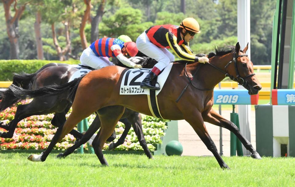 5R2歳新馬戦を制したカトゥルスフェリス=新潟競馬場(撮影・園田高夫)