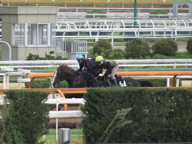 ペールエールのパワーのある走りは強調できるところだろう(写真奥、撮影:井内利彰)