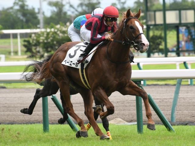 M.デムーロ騎手×安田隆行厩舎のペールエール