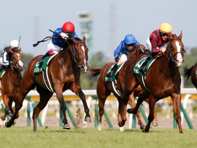 優勝したウーマンズハート(左)と2着のペールエール(右)が直線で競り合った(c)netkeiba.com、撮影:下野雄規