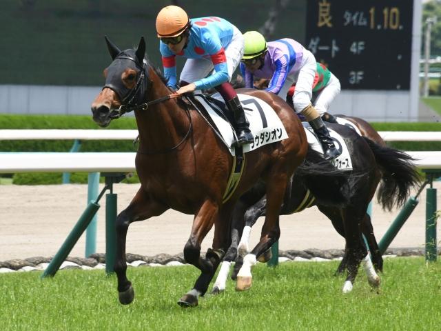 阪神芝1200mで行われた新馬戦を完勝したラウダシオン