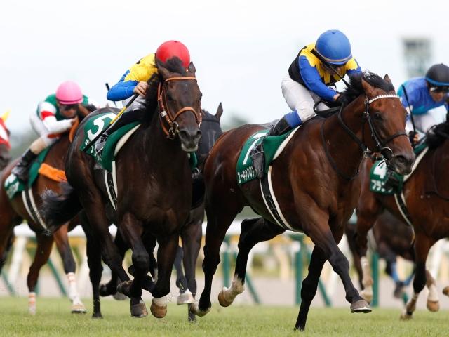岩田騎手の好騎乗も光り新潟記念を制したユーキャンスマイル(撮影:下野雄規)