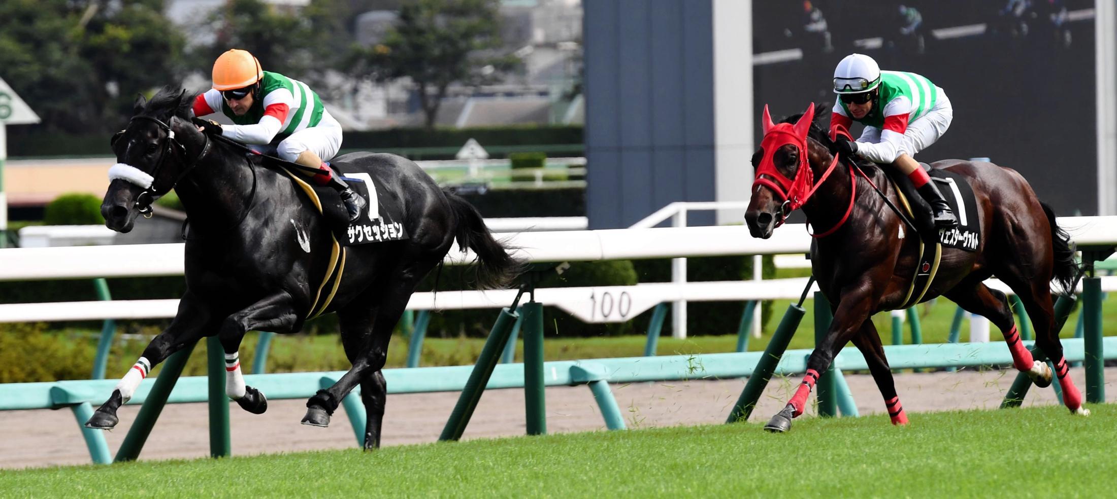 9R、アスター賞を危なげなく勝利したサクセッション(左)=中山競馬場(撮影・三好信也)