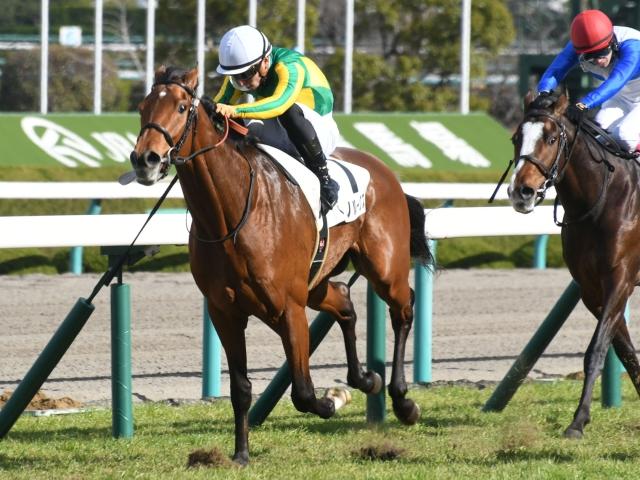 川田騎手と2度目のコンビとなるサトノルークス(写真は500万下優勝時)