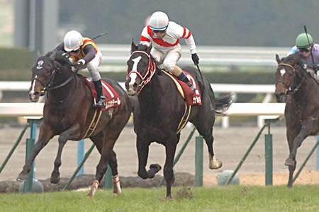 高倉稜騎手騎乗の10番人気カポーティスターがインから抜けて重賞初制覇/日経新春杯