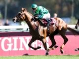 【仏・ニエル賞】仏ダービー馬ソットサスが内から抜け出しV/海外競馬レース結果