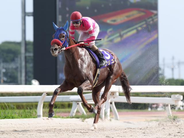 笠松のクイーンCを5馬身差圧勝したリリコ(撮影:谷口浩)