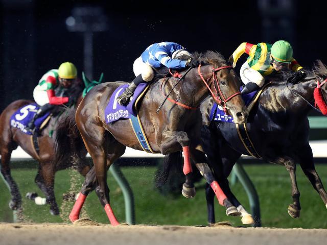 高松亮騎手騎乗の2番人気ヤマショウブラックが勝利(写真提供:岩手県競馬組合)