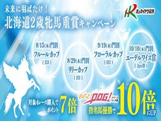 「フローラルカップ(H3)」を対象に、ポイントが最大「10倍」になる「北海道2歳牝馬重賞キャンペーン」を実施!