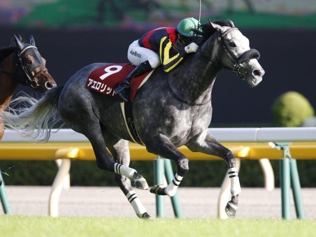 アエロリットは連覇がかかる毎日王冠で津村明秀騎手と新コンビ(撮影:下野雄規)