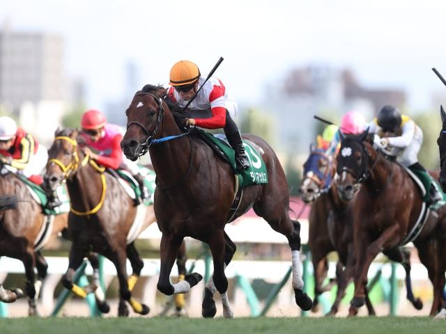 キーンランドC優勝馬のダノンスマッシュなどが登録(c)netkeiba.com、撮影:高橋正和