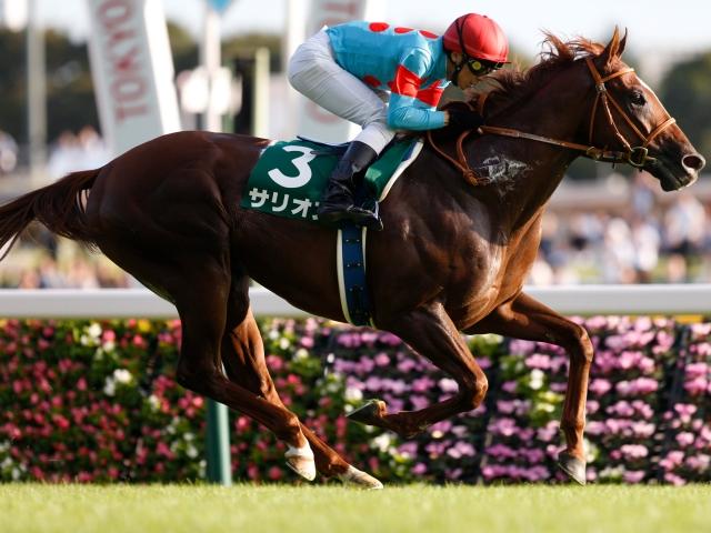 石橋脩騎手騎乗のサリオスが断然人気に応え、レコードタイムで重賞勝ち(c)netkeiba.com、撮影:下野雄規