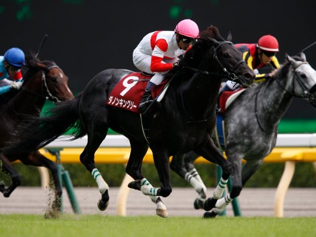 戸崎圭太騎手騎乗の1番人気ダノンキングリーが勝利(撮影:下野雄規)