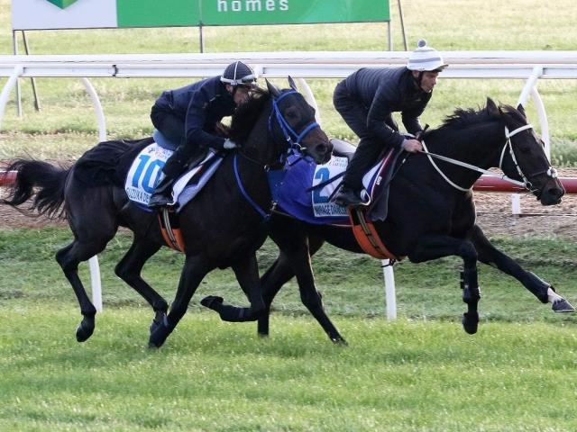 マイケル・ディー騎手を背にするスズカデヴィアス(写真左)と、英国馬ミラージュダンサー(写真右、撮影:Darryl Sherer)