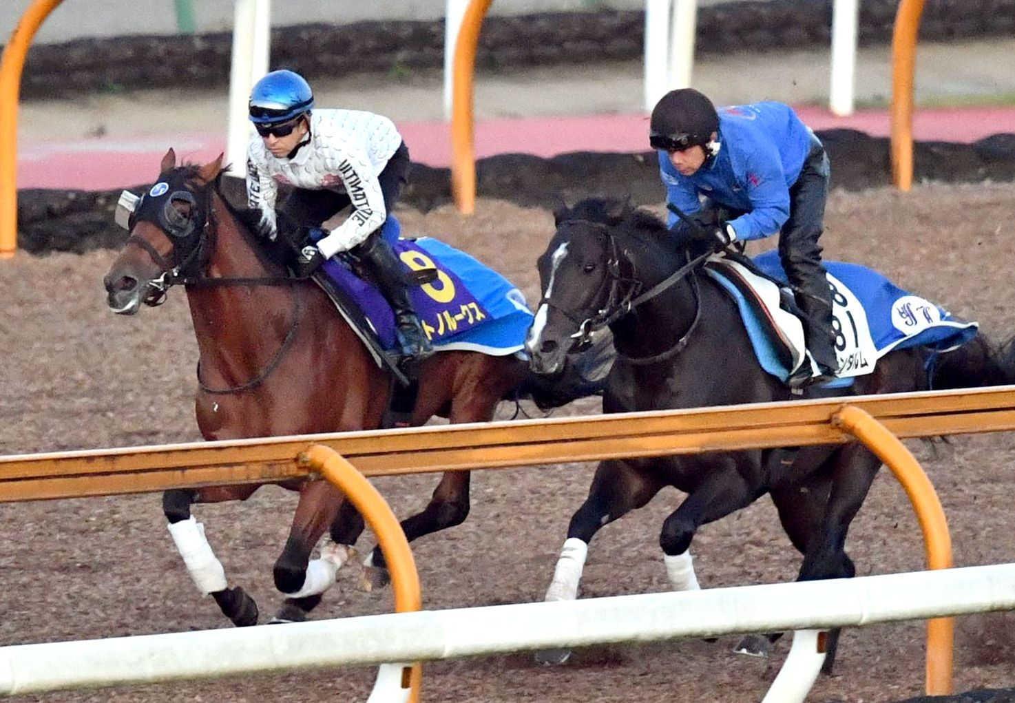 福永を背に栗東CWで追い切られたサトノルークス(左)
