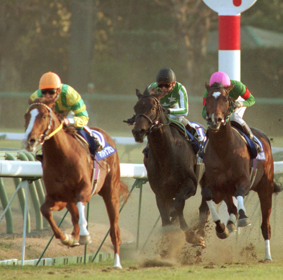 1995年の有馬記念を制したマヤノトップガン(左)