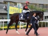 ペルシアンナイトが香港マイルの招待受諾 昨年5着に続く参戦