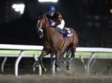【地方競馬】キタサンミカヅキが引退、種牡馬入り ダートグレード競走で3度のJRA勢撃破
