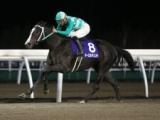 【門別・ブロッサムC】8番人気ネーロルチェンテが3馬身差快勝/地方競馬レース結果