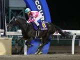 【門別・道営記念】リンノレジェンドが逃げ切りV 3連勝でシーズンを締める/地方競馬レース結果