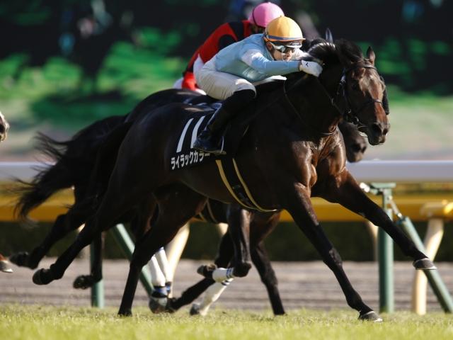木幡育也騎手騎乗の11番人気ライラックカラーが勝利(c)netkeiba.com、撮影:下野雄規