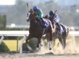 【浦和記念】 JRA所属の出走予定馬および補欠馬について