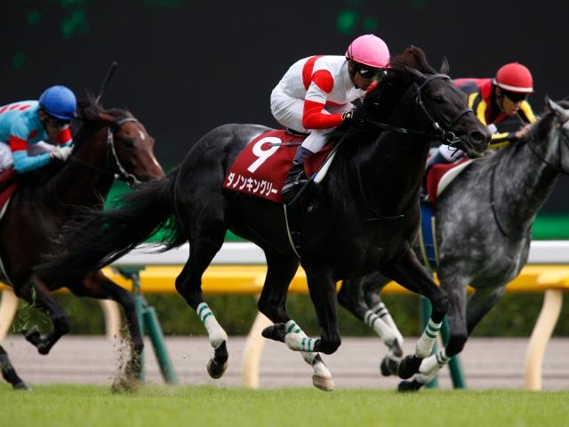 毎日王冠を制した3歳馬ダノンキングリーが古馬GIに挑む(撮影:下野雄規)