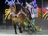 【ばんえい菊花賞】メムロボブサップが逃げ切りV 二冠達成/地方競馬レース結果